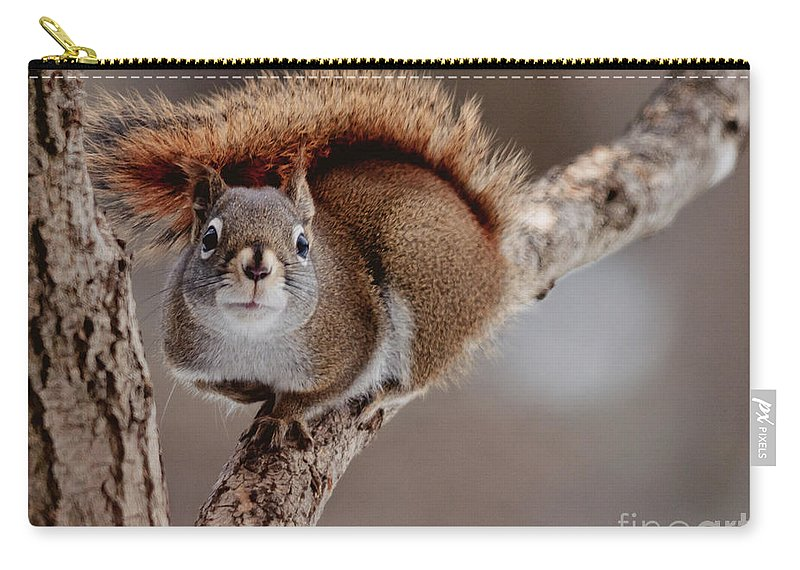 Carry-all Pouch featuring the photograph Attitude by Cheryl Baxter