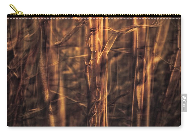 Art Carry-all Pouch featuring the photograph Autummn's Promise 13 by Joe Mamer