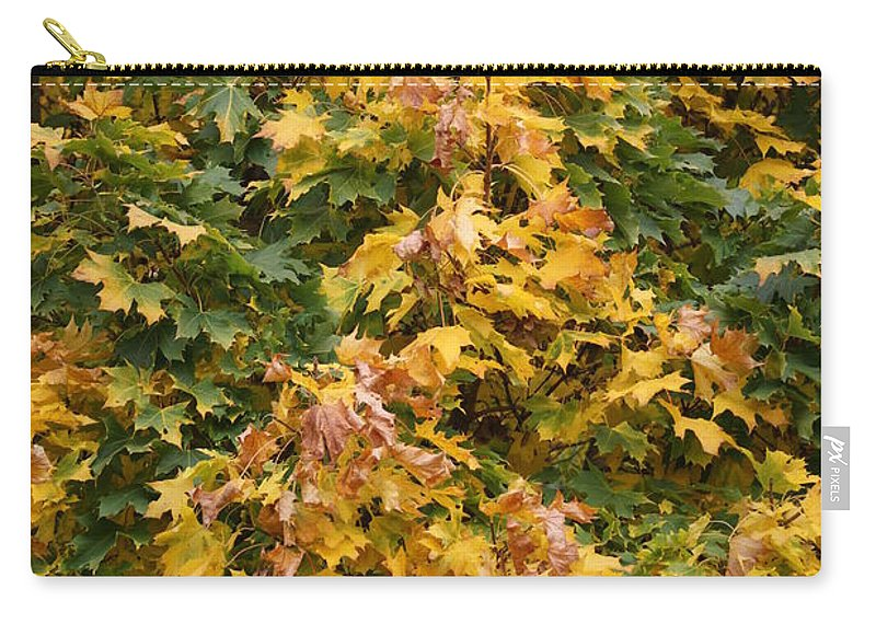 Autumn Carry-all Pouch featuring the photograph Autumn Beauty 1 by Carol Lynch