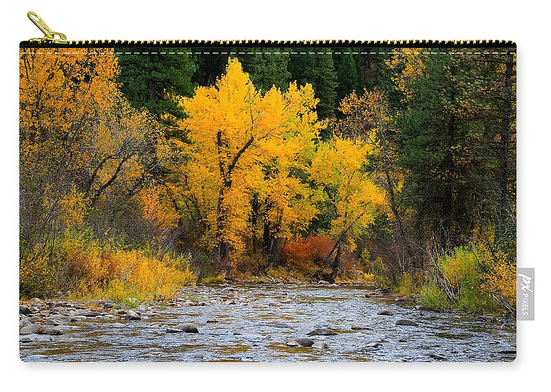 Landscape Carry-all Pouch featuring the photograph Autumn Beauty In Boise County by Ed Riche