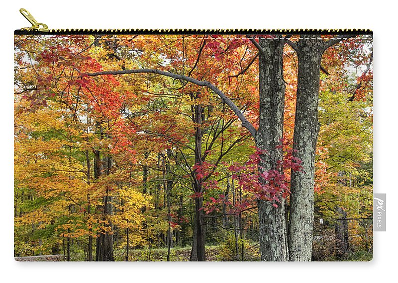 Fall Carry-all Pouch featuring the photograph Autumn by Claudia Kuhn