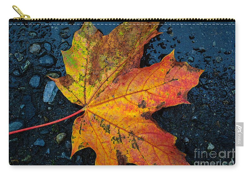 Autumn Carry-all Pouch featuring the photograph Autumn Colors by Tikvah's Hope
