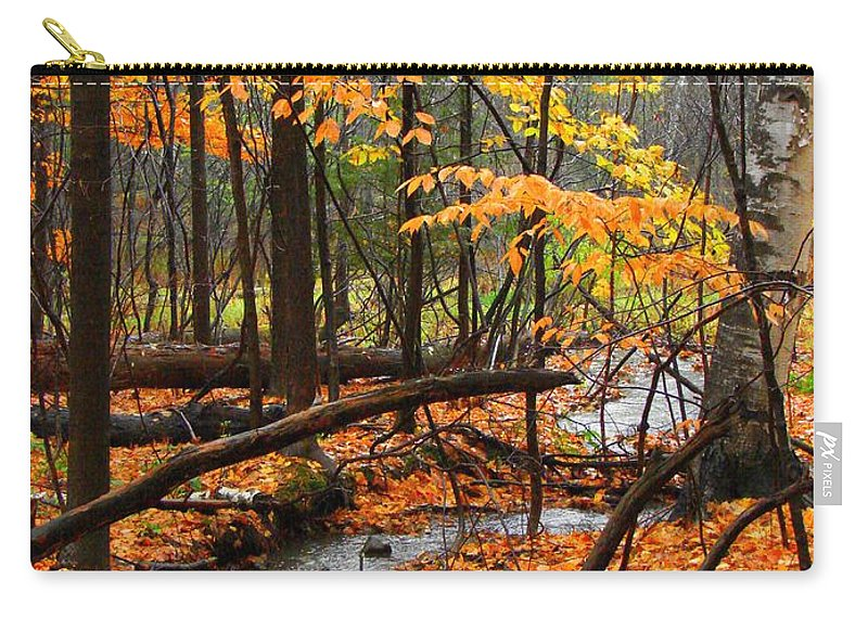 Autumn Carry-all Pouch featuring the photograph Autumn Creek In The Rain by Rodney Lee Williams