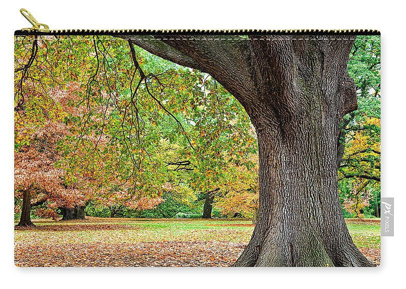 Autumn Carry-all Pouch featuring the photograph Autumn by Dave Bowman