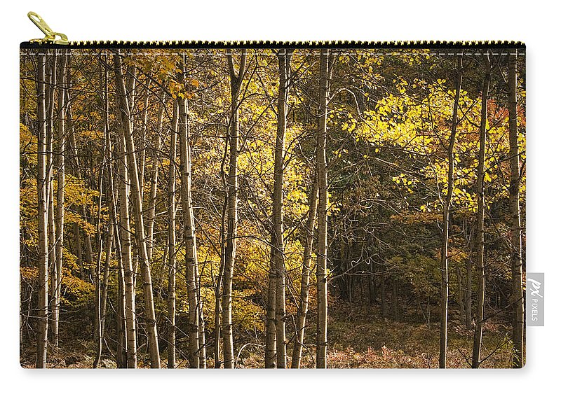 Art Carry-all Pouch featuring the photograph Autumn Forest Scene With Birches In West Michigan by Randall Nyhof