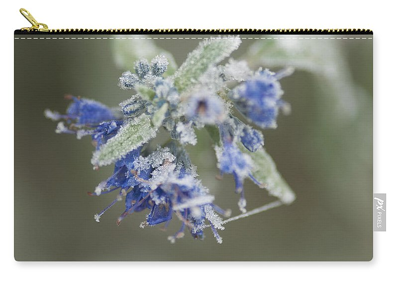Autumn Carry-all Pouch featuring the photograph Autumn Frost by Miguel Winterpacht