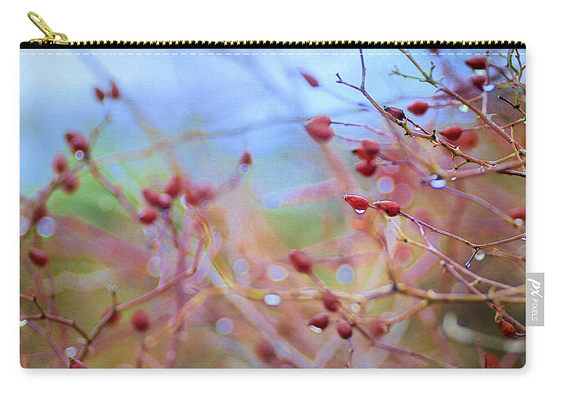 Fruits Carry-all Pouch featuring the photograph Autumn Fruits by Guido Montanes Castillo