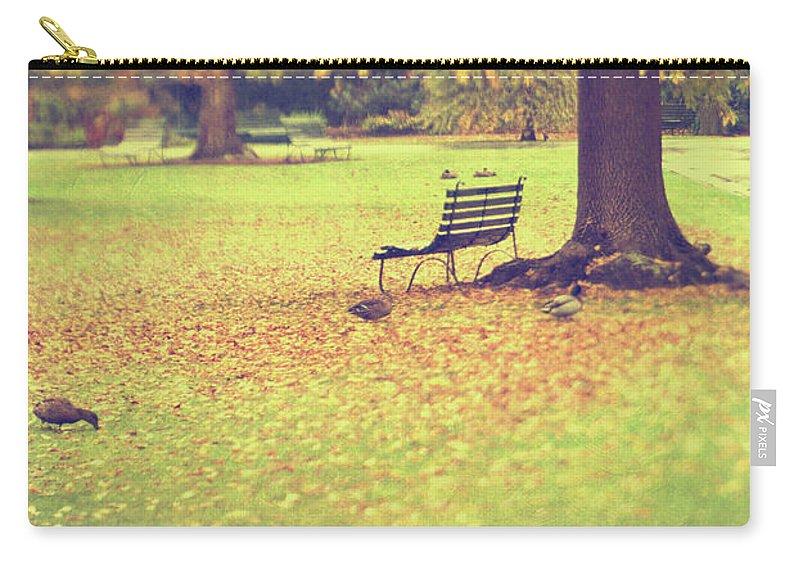 Grass Carry-all Pouch featuring the photograph Autumn Gardens by Jill Ferry
