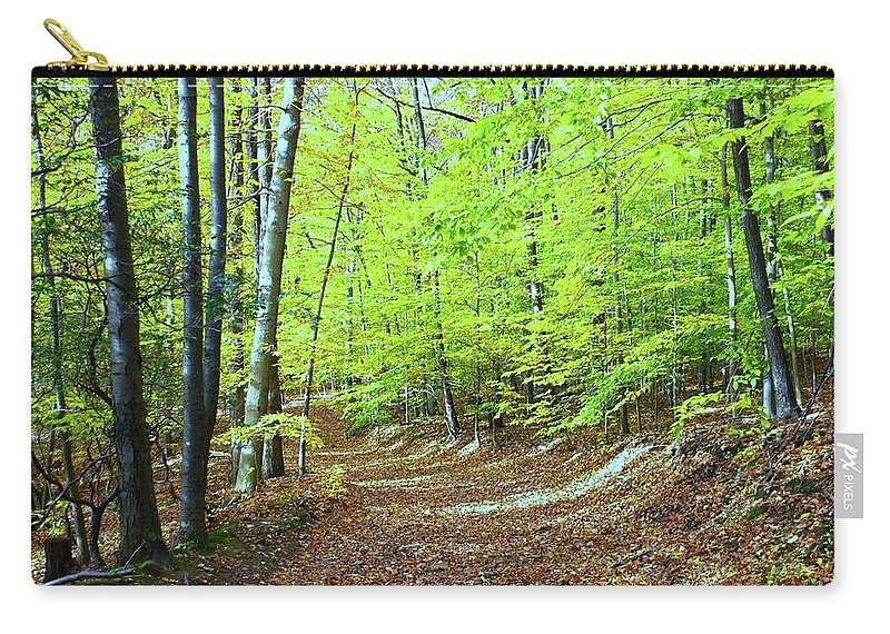 Eagle Rock Reservation Carry-all Pouch featuring the photograph Autumn Gold 3 by Allen Beatty