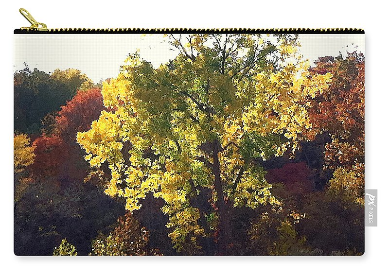 Landscape Carry-all Pouch featuring the photograph Autumn Gold by Steve Karol