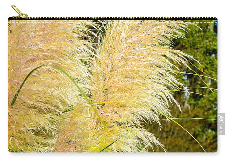 Grass Carry-all Pouch featuring the photograph Autumn Grass by Tikvah's Hope