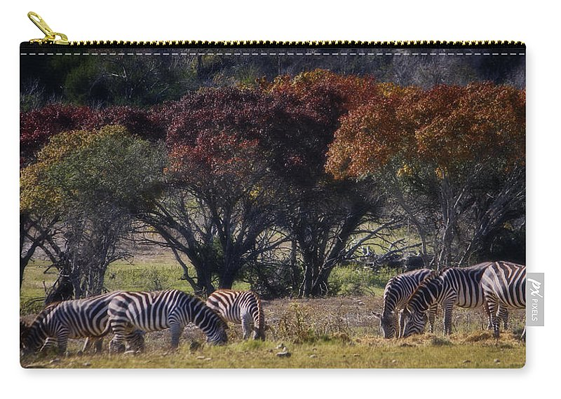 Animal Carry-all Pouch featuring the photograph Autumn Grazing by Joan Carroll