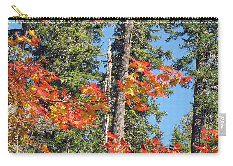 Autumn Carry-all Pouch featuring the photograph Autumn In The Forest by Tikvah's Hope