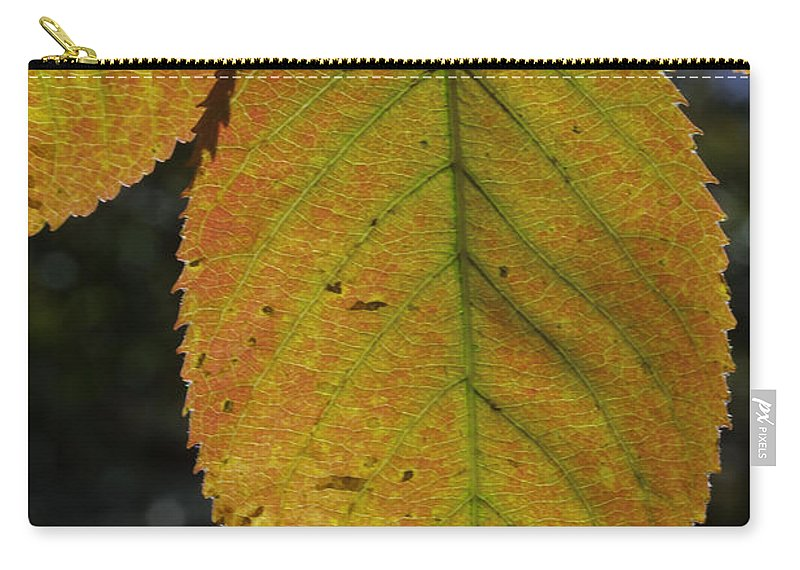 Orange Carry-all Pouch featuring the photograph Autumn Leaf by David Freuthal