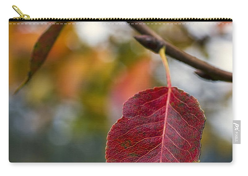 Fall Carry-all Pouch featuring the photograph Autumn Leaf by Paulo Goncalves