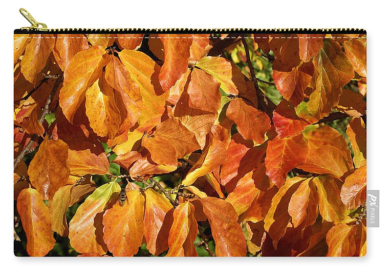 Autumn Carry-all Pouch featuring the photograph Autumn Leaves 82 by Ron Harpham