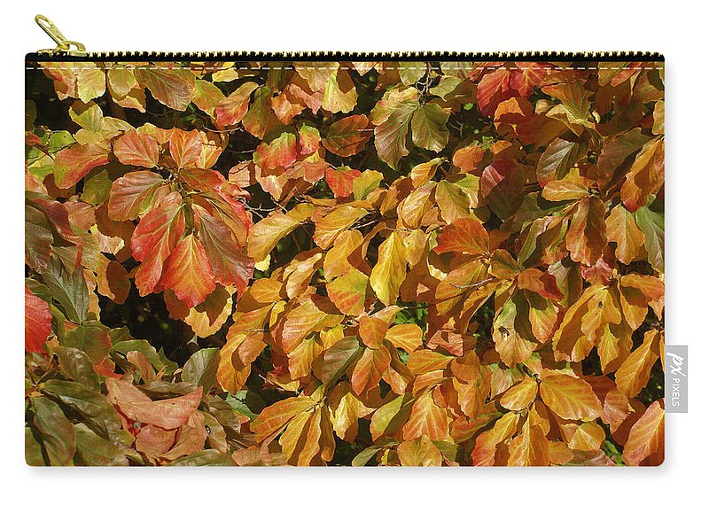 Autumn Carry-all Pouch featuring the photograph Autumn Leaves 83 by Ron Harpham