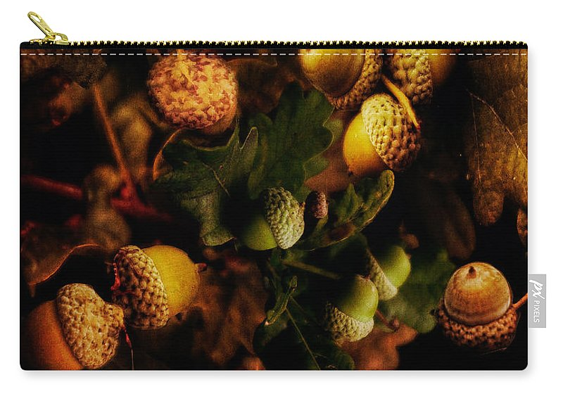 Acorn Carry-all Pouch featuring the photograph Autumn Oak by Chris Lord