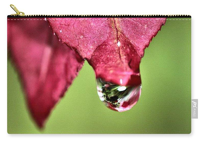 Autumn Rain Carry-all Pouch featuring the photograph Autumn Rain by Dan Sproul