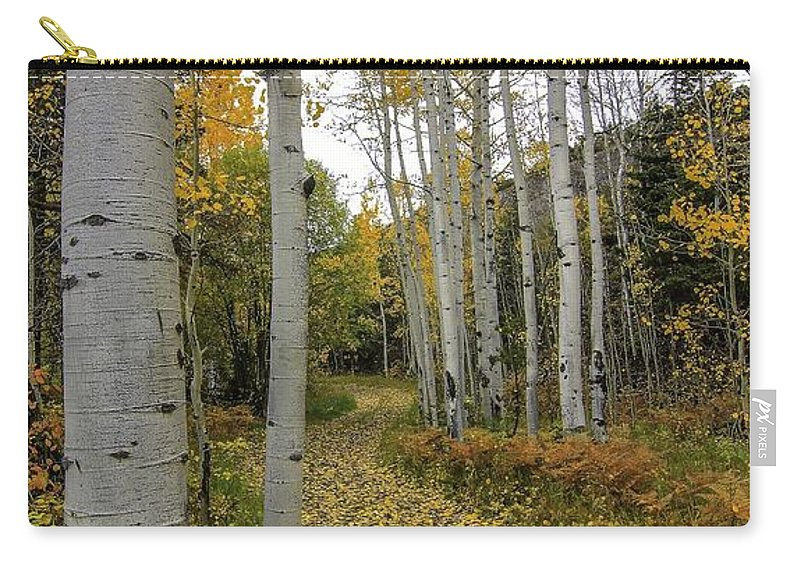 Landscape Carry-all Pouch featuring the photograph Autumn Stroll by Bill Sherrell