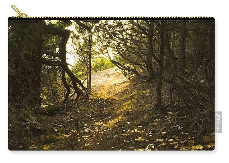 Pacific Northwest Woods Carry-all Pouch featuring the photograph Autumn Trail In Woods by Yulia Kazansky