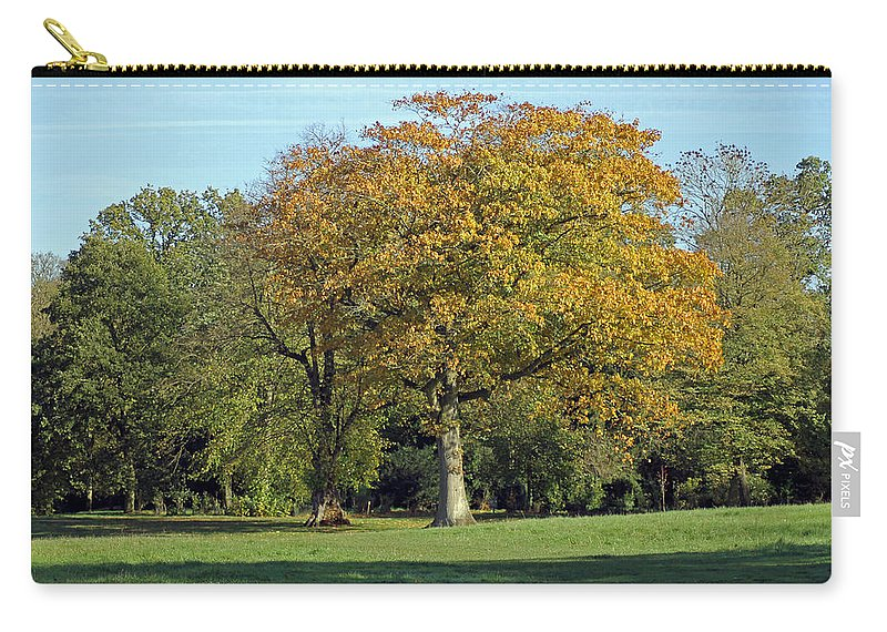Tree Carry-all Pouch featuring the photograph Autumn Tree by Tony Murtagh