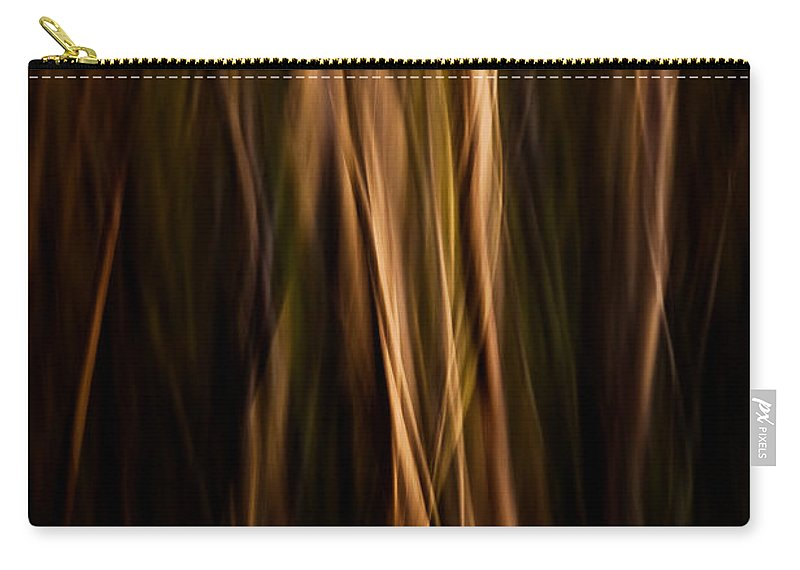 Art Carry-all Pouch featuring the photograph Autumn's Promise 12 by Joe Mamer