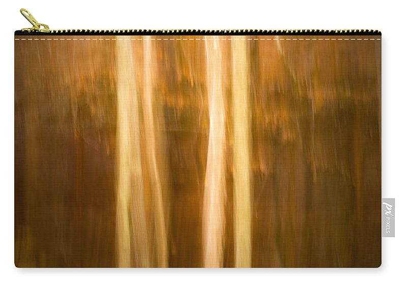Art Carry-all Pouch featuring the photograph Autumn's Promise 16 by Joe Mamer