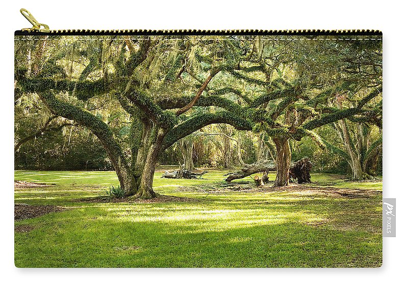 Oak Trees Carry-all Pouch featuring the photograph Avery Island Oaks by Scott Pellegrin