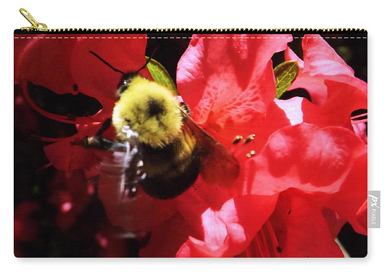 Wakening Carry-all Pouch featuring the photograph Awakening by Robyn King