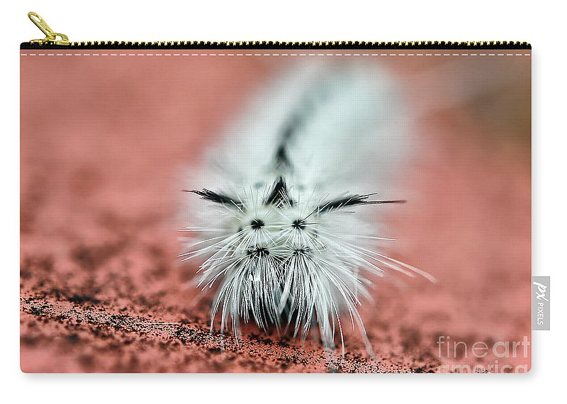 Caterpillar Carry-all Pouch featuring the photograph Awww Don't Cry by Lois Bryan