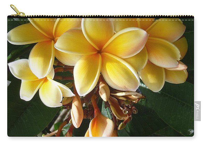 Aztec Gold Carry-all Pouch featuring the photograph Aztec Gold Plumeria by Mary Deal