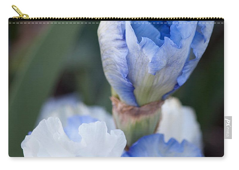 Landscapes Carry-all Pouch featuring the photograph Baby Blue by Steve Herndon
