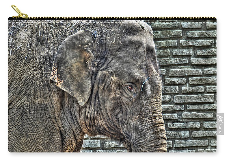 Asian Elephant Carry-all Pouch featuring the photograph Baby Elephant by Michael Frank Jr
