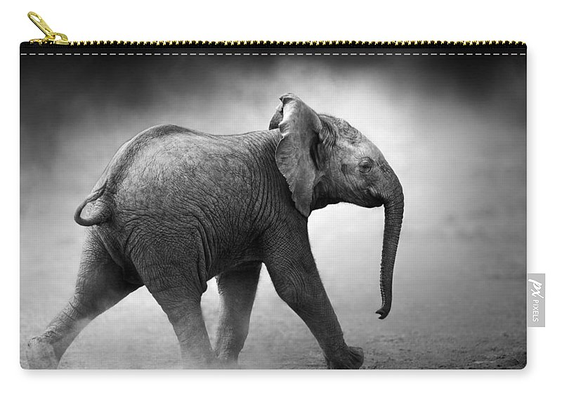Elephant Carry-all Pouch featuring the photograph Baby Elephant Running by Johan Swanepoel