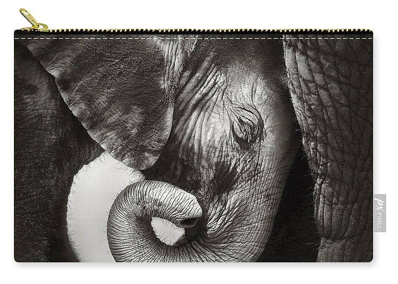 Elephant Carry-all Pouch featuring the photograph Baby elephant seeking comfort by Johan Swanepoel