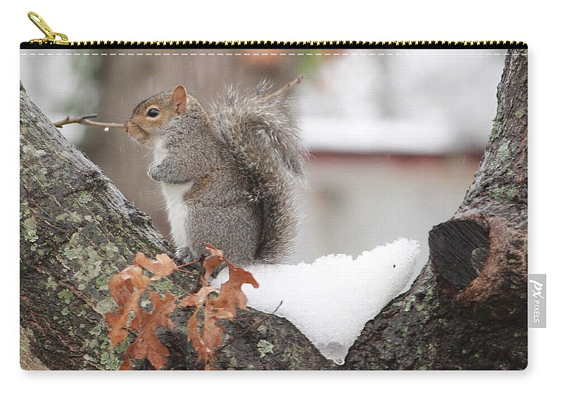 Squirrel Carry-all Pouch featuring the photograph Baby It's Cold Outside by Karen Beasley