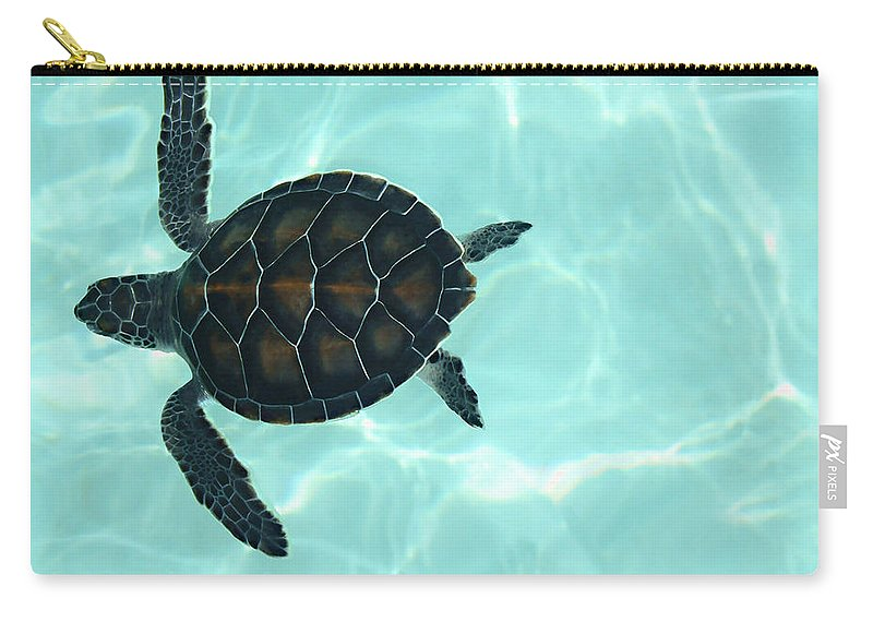 Baby Sea Turtle Carry-all Pouch featuring the photograph Baby Sea Turtle by Ellen Henneke