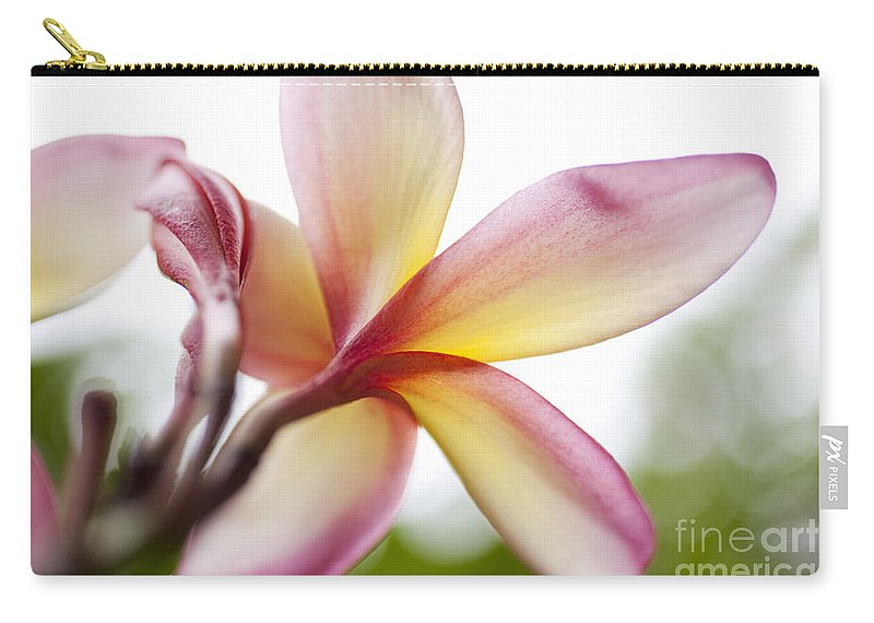 Hawaii Carry-all Pouch featuring the photograph Back Of Plumeria Flower by Charmian Vistaunet