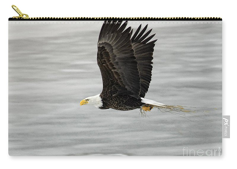 Eagles Carry-all Pouch featuring the photograph Back To The Nest by Claudia Kuhn