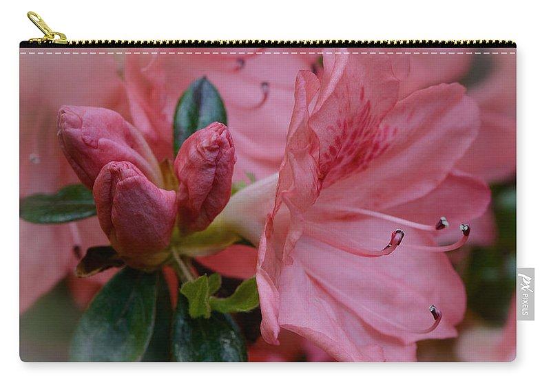 Azaleas Carry-all Pouch featuring the photograph Backyard Glamor by Charlie Choc