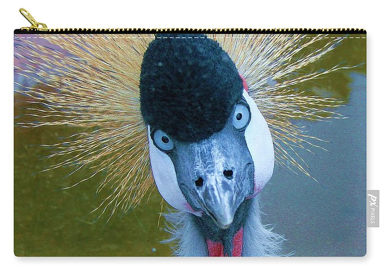 Bad Hair Day Carry-all Pouch featuring the photograph Bad Hair Day by Margaret Bobb