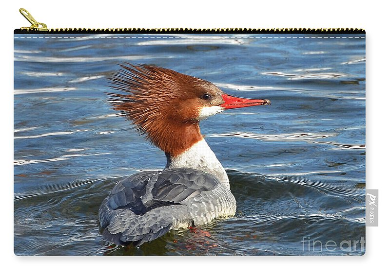 Duck Carry-all Pouch featuring the photograph Bad Hair Day by Rodney Campbell