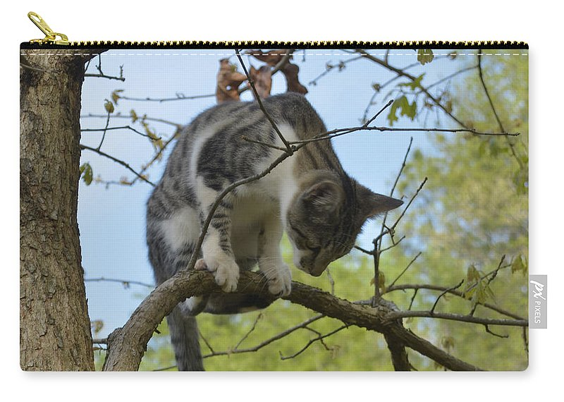 Animal Carry-all Pouch featuring the photograph Balancing Act by Donna Brown