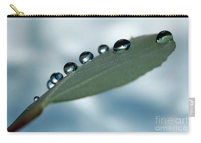 Green Leaf Carry-all Pouch featuring the photograph Balancing Act by Krissy Katsimbras