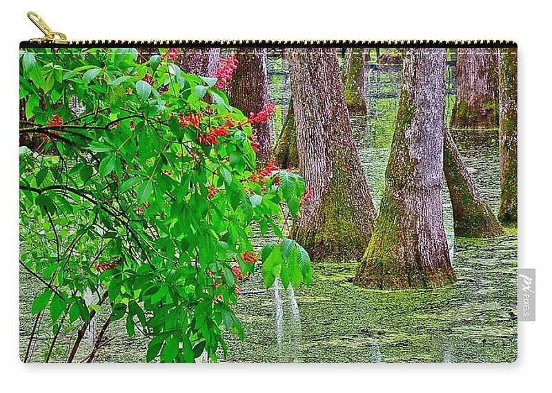Bald Cypress And Red Buckeye Tree At Mile 122 Of Natchez Trace Parkway Carry-all Pouch featuring the photograph Bald Cypress And Red Buckeye Tree At Mile 122 Of Natchez Trace Parkway-mississippi by Ruth Hager