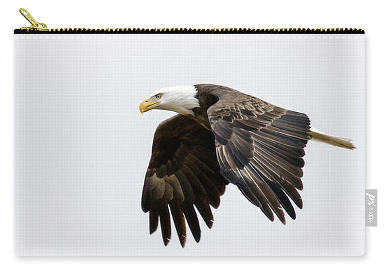 Eagle Carry-all Pouch featuring the photograph Bald Eagle 3 by David Lester