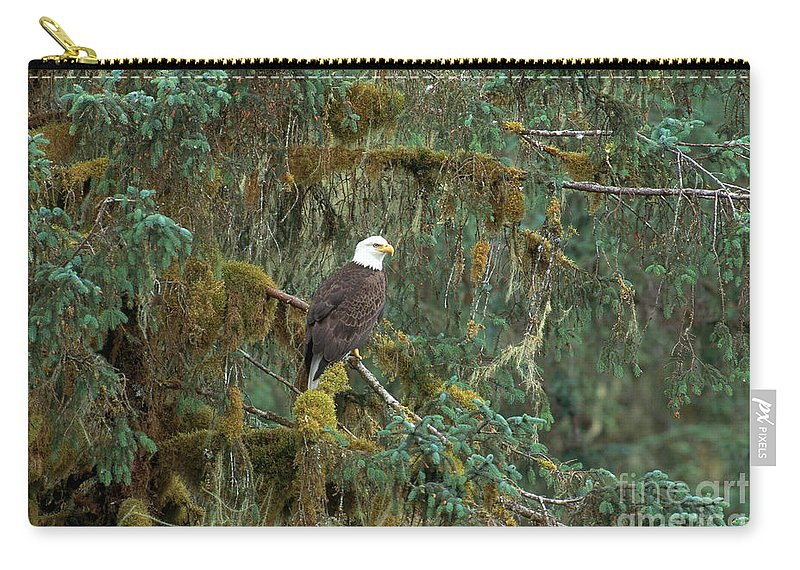 Animal Carry-all Pouch featuring the photograph Bald Eagle by Art Wolfe
