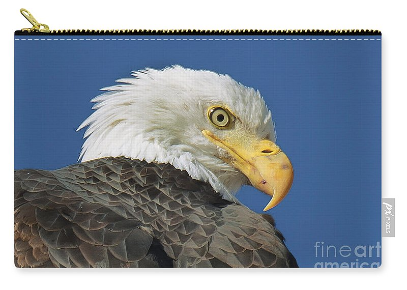 Eagle Carry-all Pouch featuring the photograph Bald Eagle Closeup by Dianne Phelps