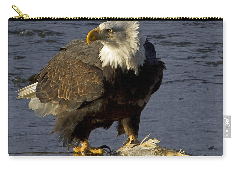 American Carry-all Pouch featuring the photograph Bald Eagle by Dee Carpenter